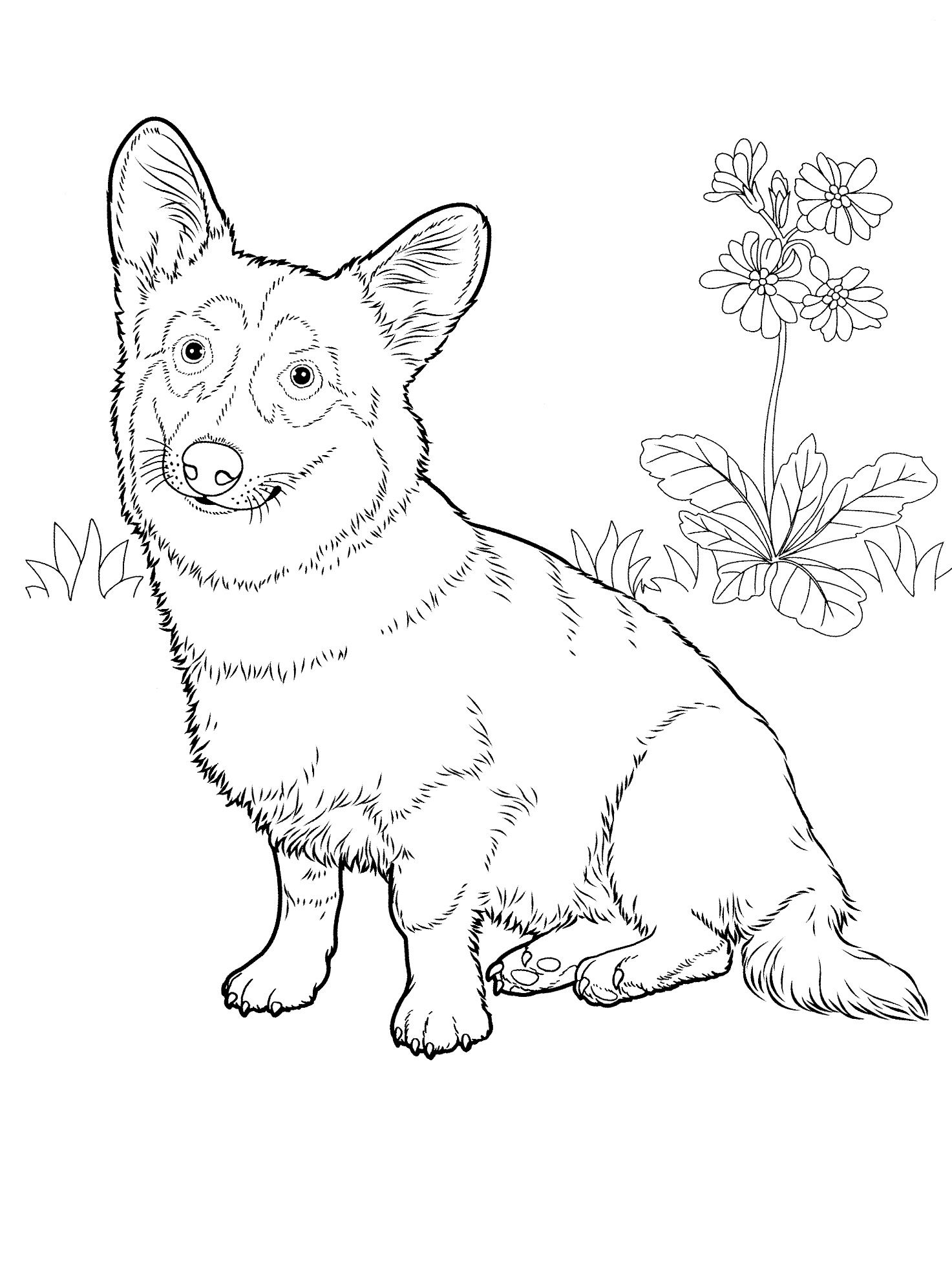 dog_coloring_pages_28 Teenagers coloring pages | Adult Coloring ...