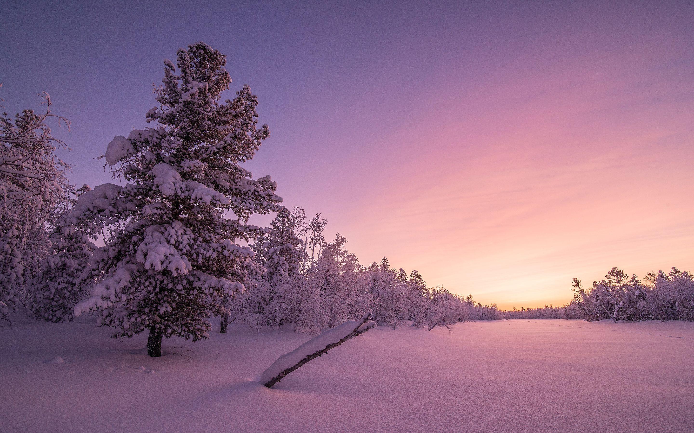 4k Winter Wallpapers Hd Http Www Hd1080pwallpaper In Nature 4k Winter Wallpapers Hd Winter Wallpaper Hd Winter Wallpaper Nature Images