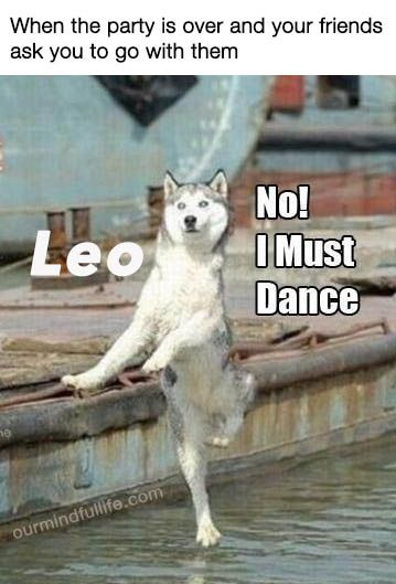 25 Relatable Leo Memes That Will Make You Feel Attacked