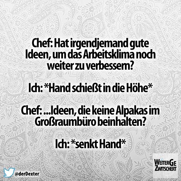Pin Von Herr Kuster Auf Humor Und Spruche Lustig Witze Witzig
