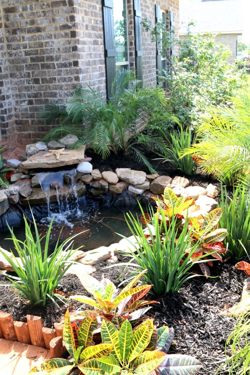 Build A Pond Diy Diy Pond Ponds Backyard Pond Landscaping