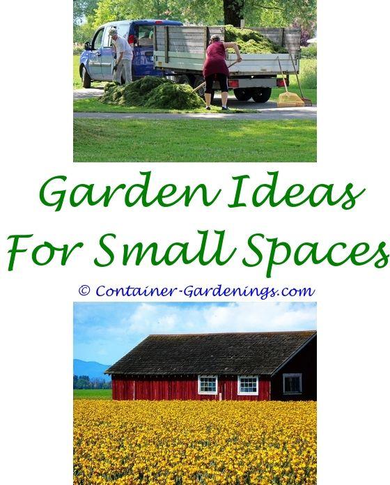 Garden Information Sites | Garden Ideas, Small Garden Ponds And Pond Design