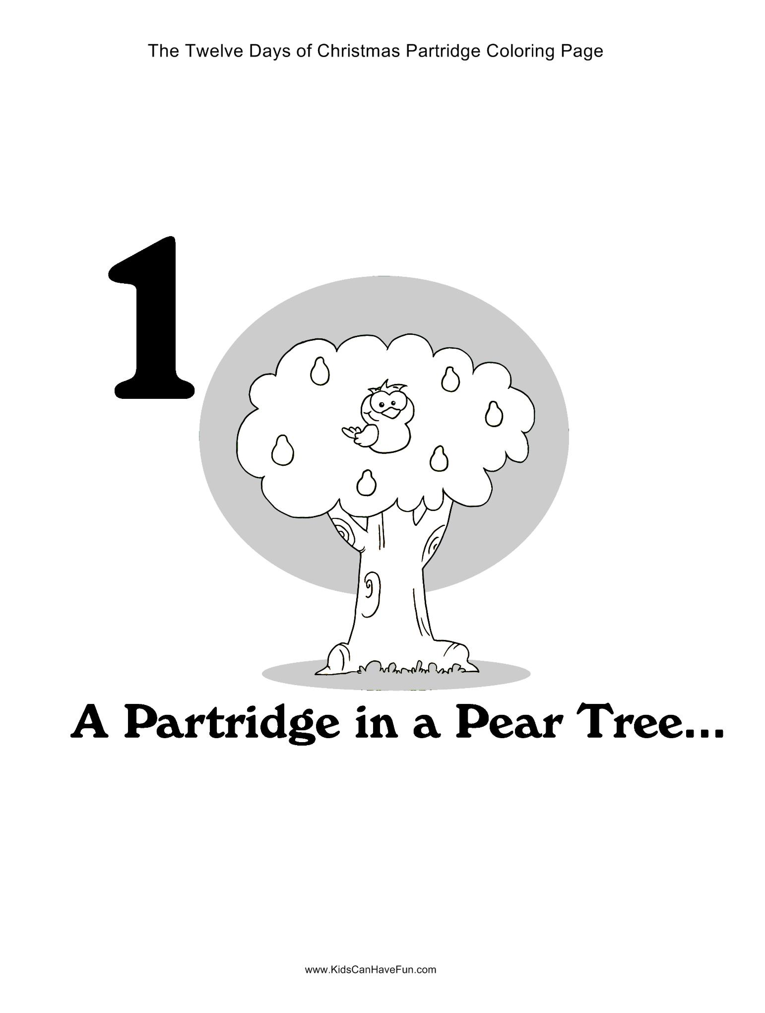 12 Days of Christmas A Partridge in a Pear Tree Coloring Page http ...