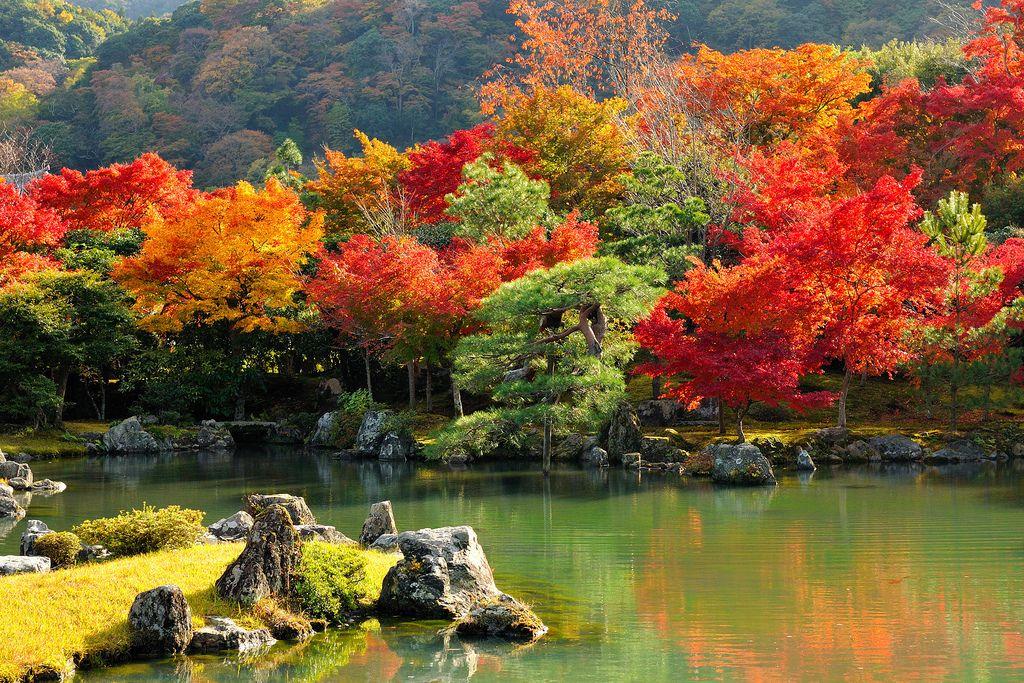 Resultado de imagem para Kyoto japão