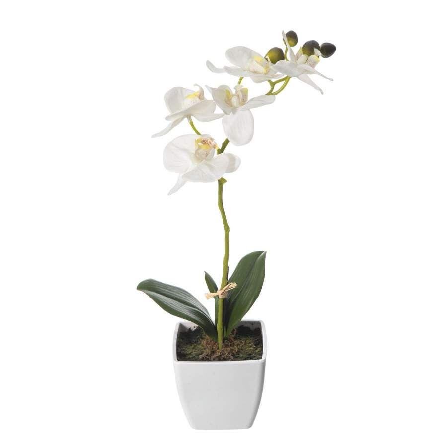 Plantas artificiales con flores planta artificial flores - Maceta para orquideas ...