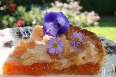 -{ Apricot Tart - Fresh apricots - nothing better! The site this is on has truly fabulous recipes....