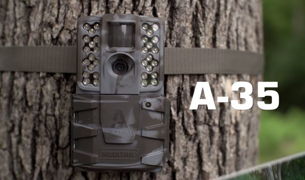 Moultrie A35 Review Is That Camera Worth Your Money Critic Hunter Game Cameras Moultrie Camera