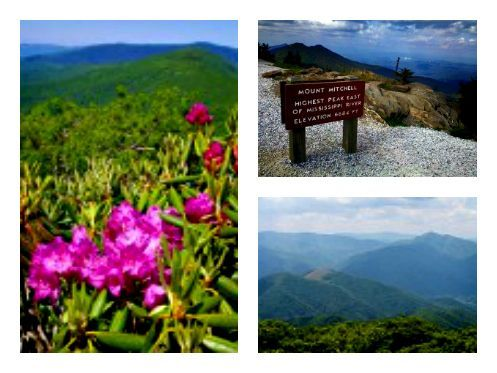 #BlueRidge #Parkway is home to some of nature's most beautiful playgrounds! Summer is the perfect time to visit Asheville and all of the hiking trails nearby.  #summerhiking #ashevillehikingtrails #blueridgeparkway #BlueRidge #Parkway is home to some of nature's most beautiful playgrounds! Summer is the perfect time to visit Asheville and all of the hiking trails nearby.  #summerhiking #ashevillehikingtrails #blueridgeparkway