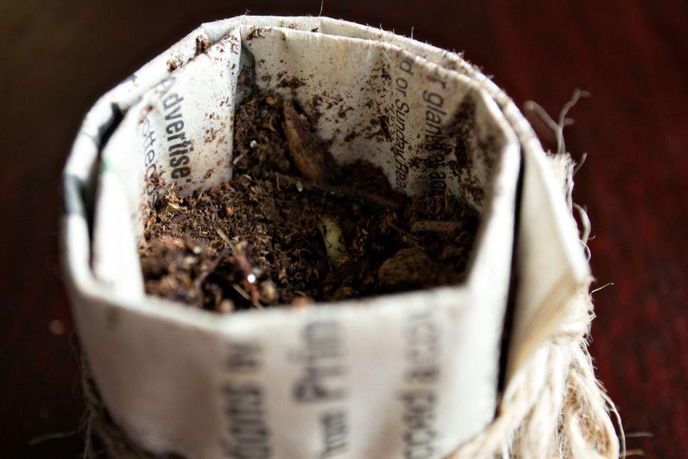 DIY Seed Starter out of newspaper.  It works!  lifeasliz.com