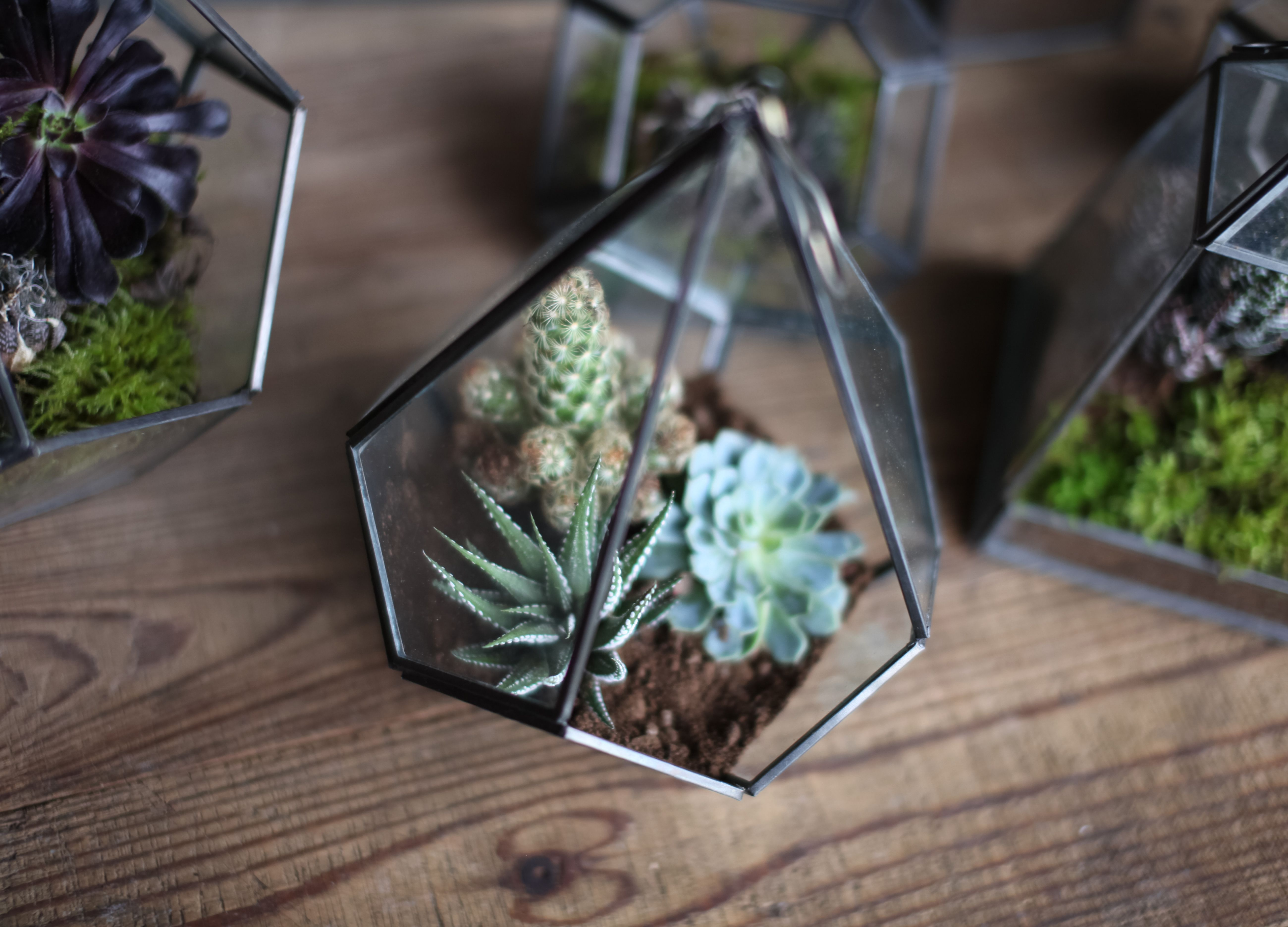 Manduri Hanging Planter | Our Manduri hanging planters are the perfect way to bring nature indoors. Their simple but elegant design provides a stylish backdrop for succulents and other indoor plants. They make a beautiful lantern or terrarium.