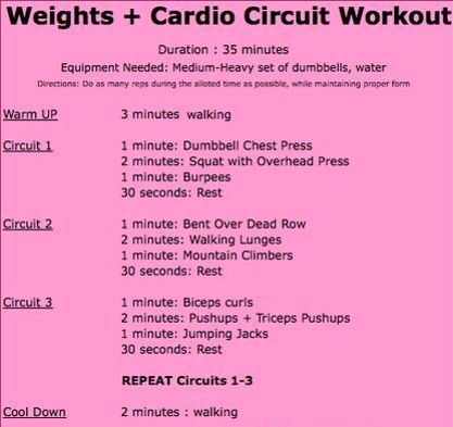 weights and cardio circuit  circuit workout circuit