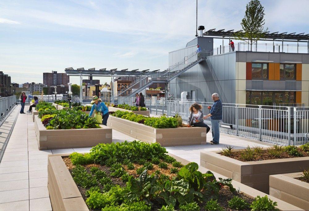 Gallery Of Winners Of The 2013 Bsa Design Awards Announced 1 Roof Garden Urban Housing Rooftop Garden