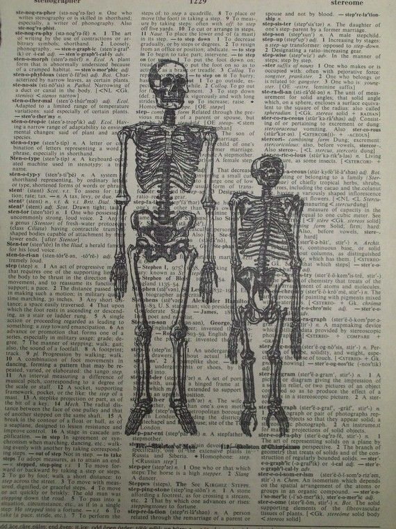 Human & Chimp Skeleton Vintage Dictionary Page by ThePaperSnail, $6.00