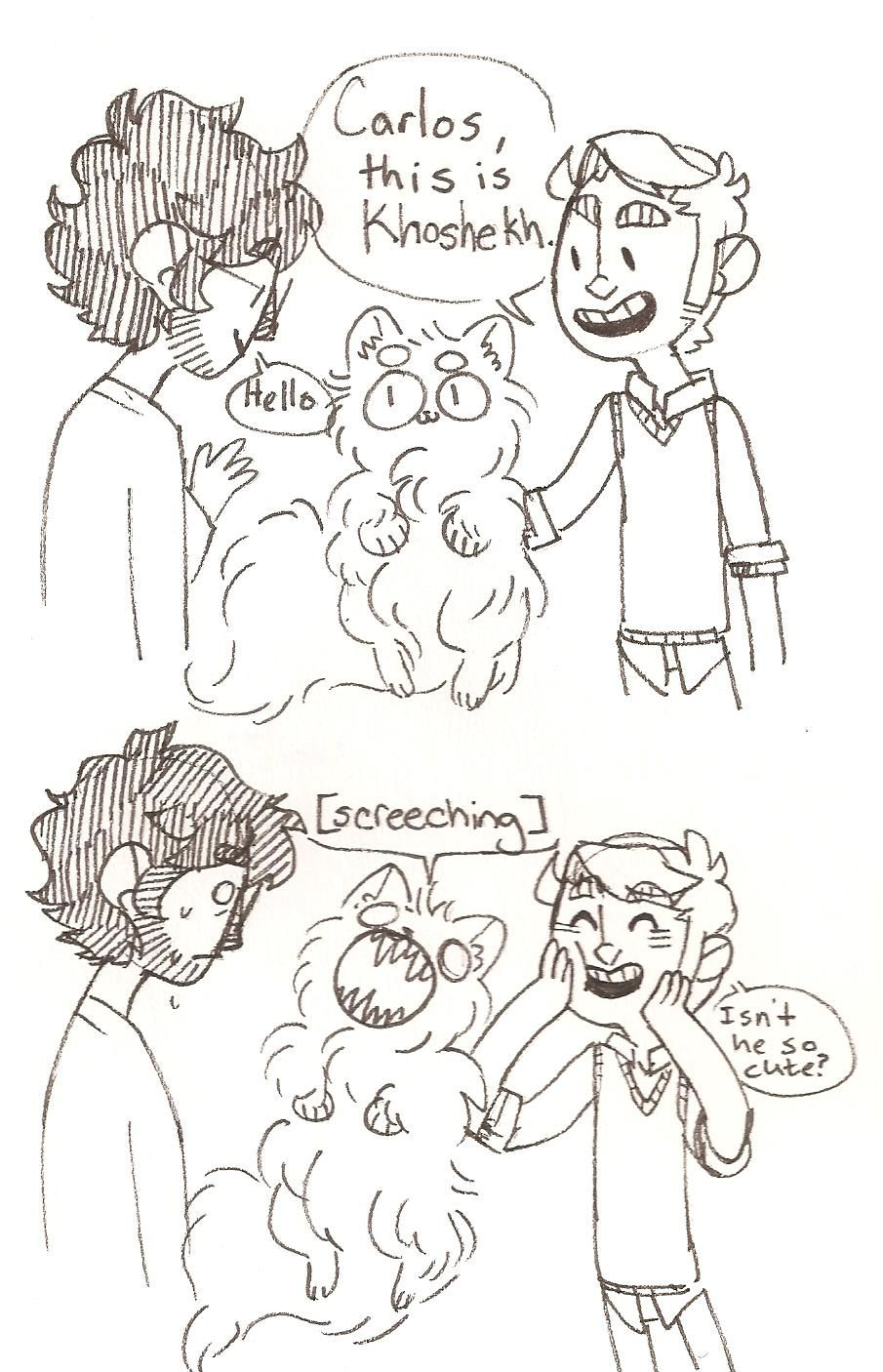 Welcome to Night Vale This also sums up what happens when I introduce my cats to new people...