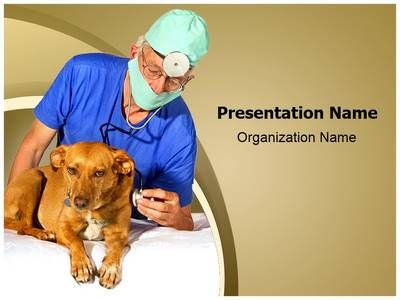 Veterinarian powerpoint template is one of the best powerpoint veterinarian powerpoint template is one of the best powerpoint templates by editabletemplates toneelgroepblik Choice Image