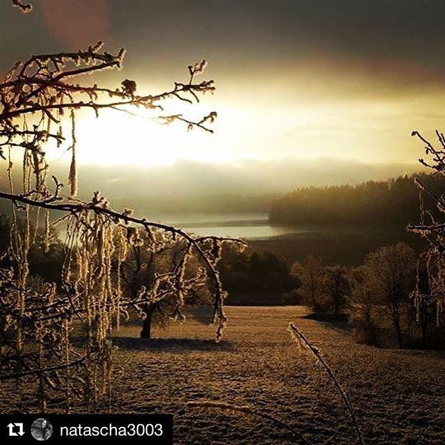 #Repost @natascha3003 with @repostapp ・・・ #faakersee #weihnachten #kärnten #stimmung #lovethisplace #carinthia #christmastime