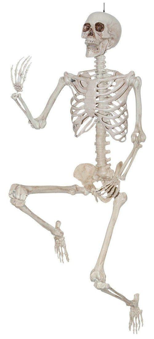 Opentip BirthdayExpress 240800 Lifesize Pose and Hold Skeleton - life size halloween decorations