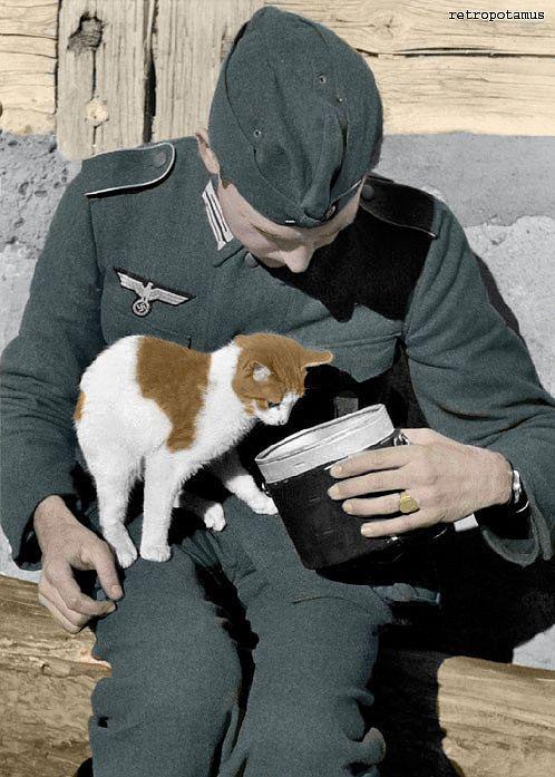 German soldier feeding a kitten, 1940.  Colorized by retropotamus.