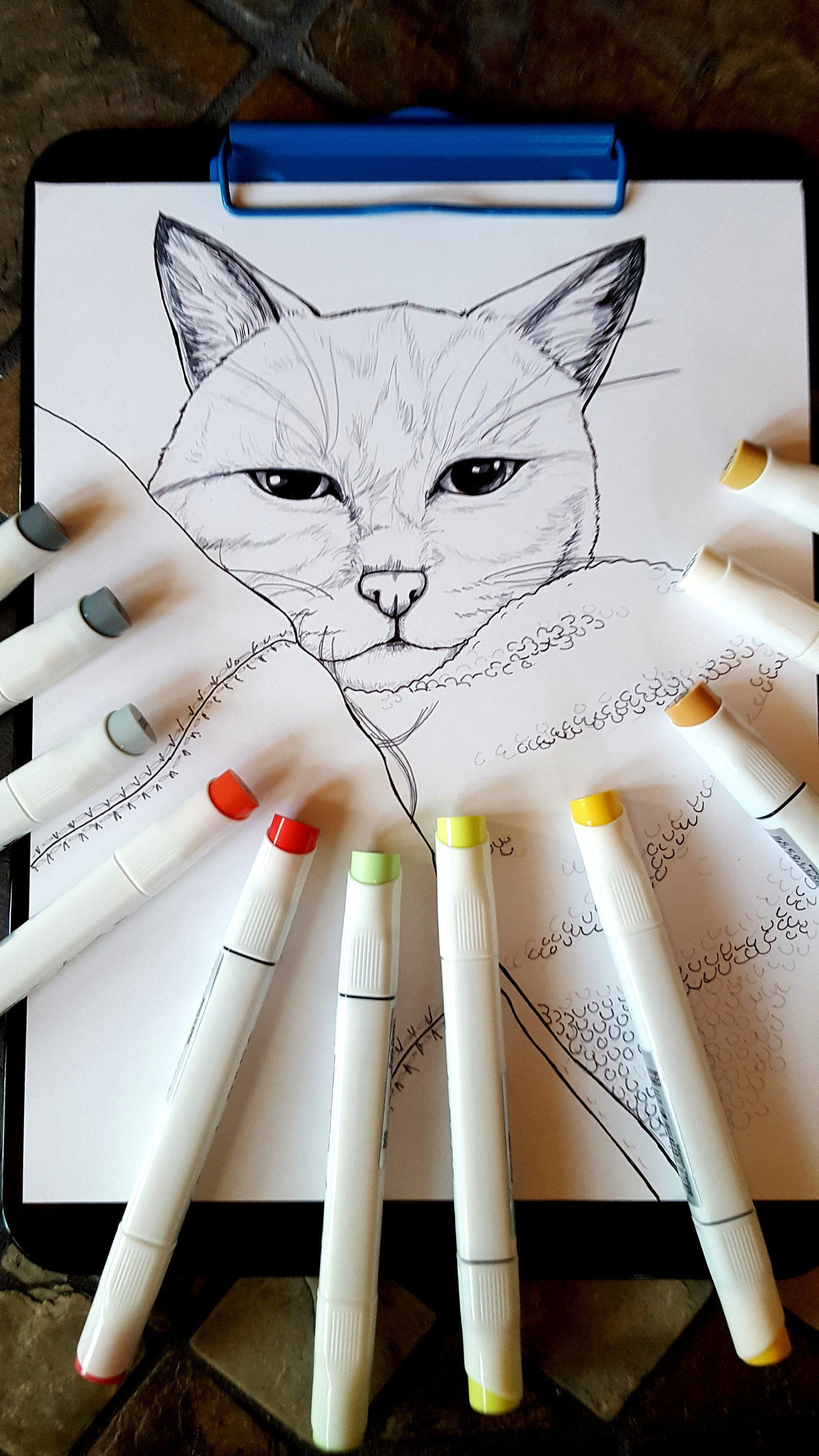 Line art cat coloring page cat coloring book coloring for kids and