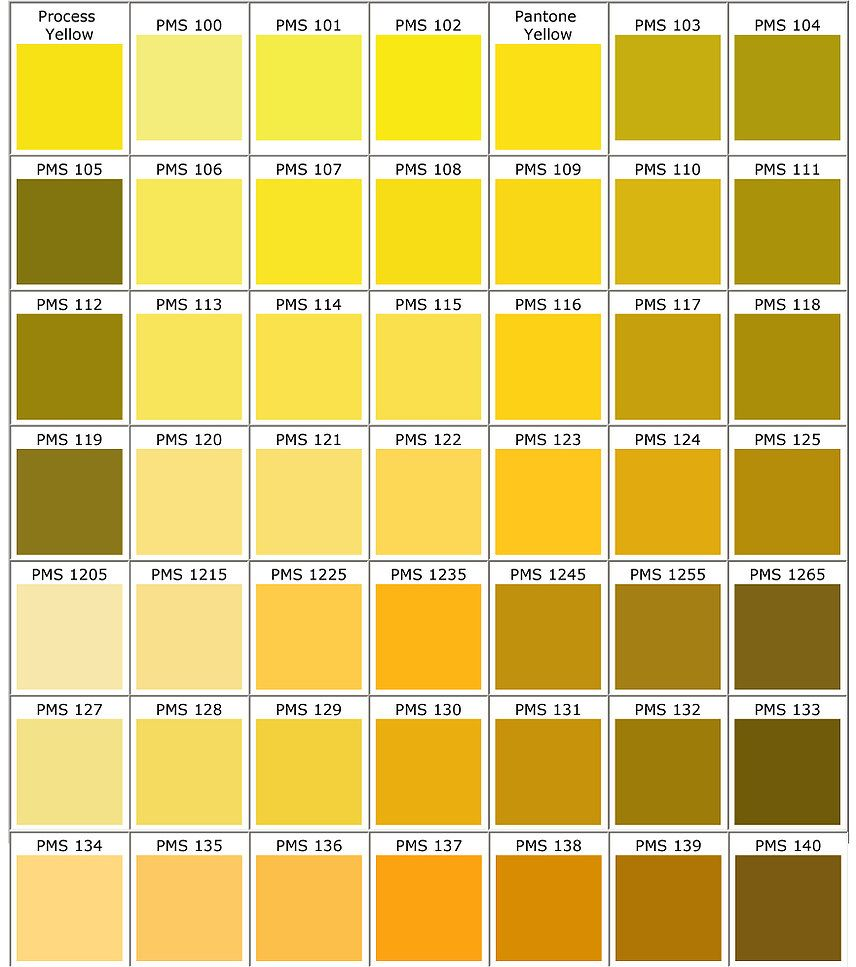 Pantone Colors  Yellow  Portfo    Pantone Color And