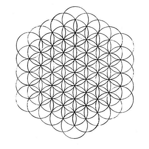 Flower of life how to draw it