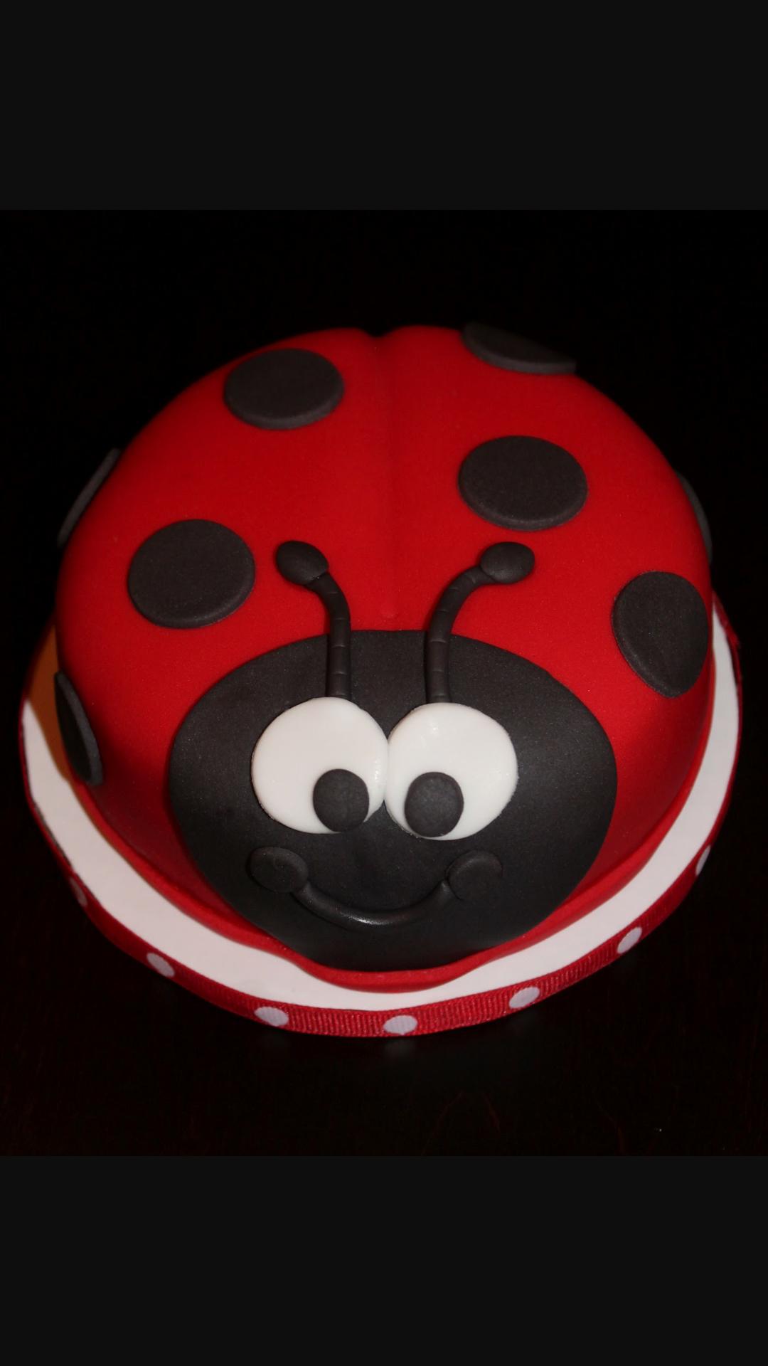 Astounding Lady Bug Cake Ladybug Cakes Bug Birthday Cakes Ladybug Cake Funny Birthday Cards Online Aeocydamsfinfo