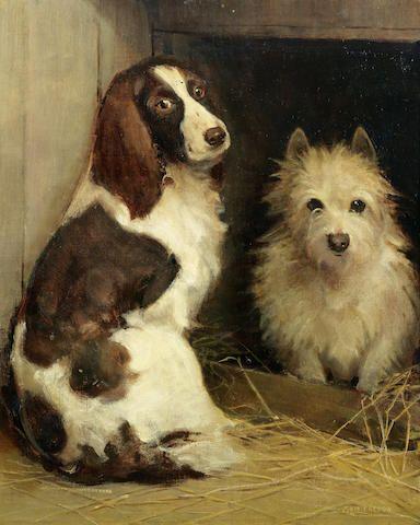 Spaniel and Cairn Terrier dogs Samuel Fulton art CANVAS print