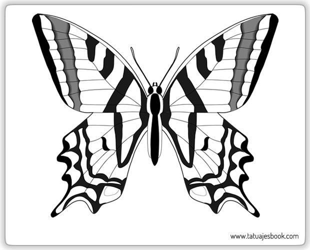 Dibujo De Mariposa Para Colorear En Linea Biblioteca De: Mariposas Para Colorear - Buscar Con Google