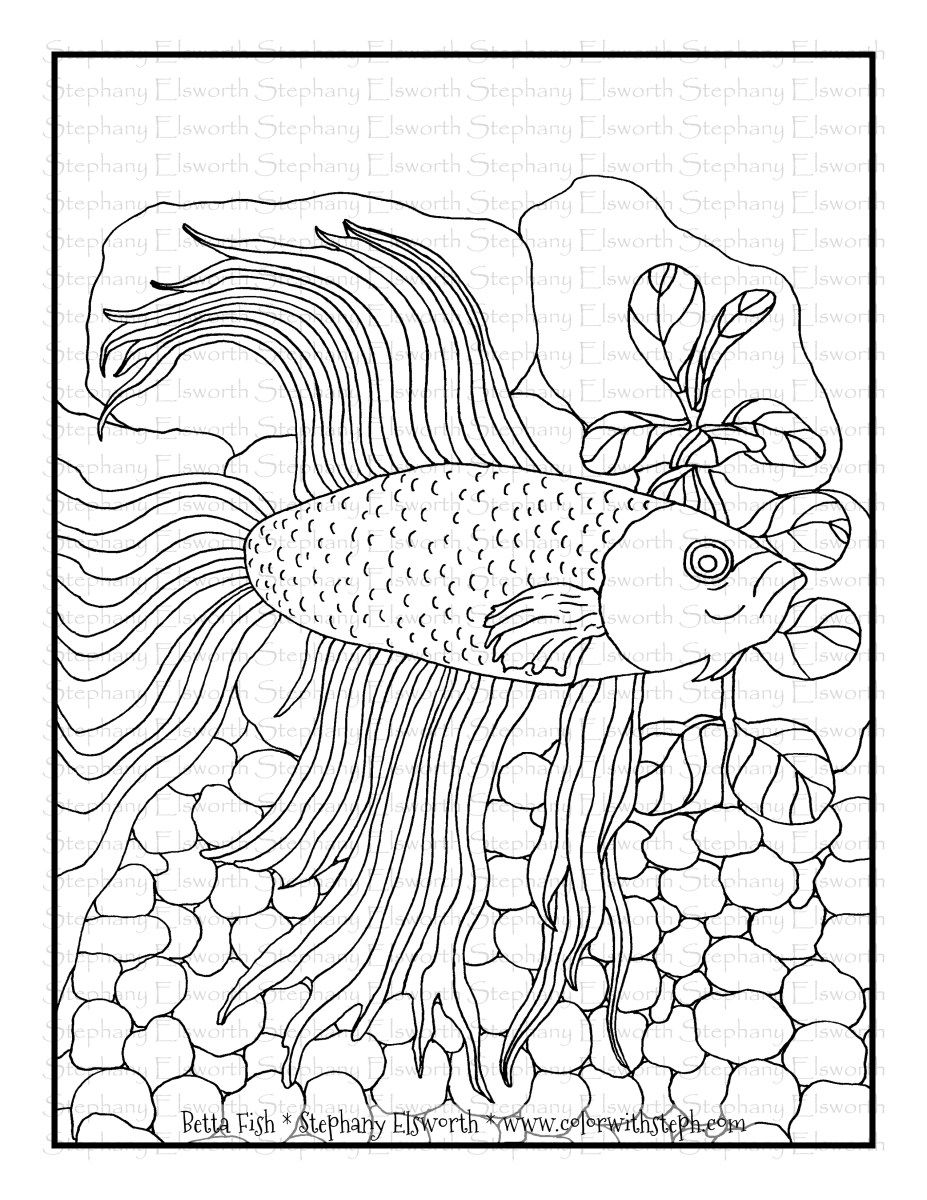 Betta Fish Free Printable Coloring Page In 2020 Free Printable