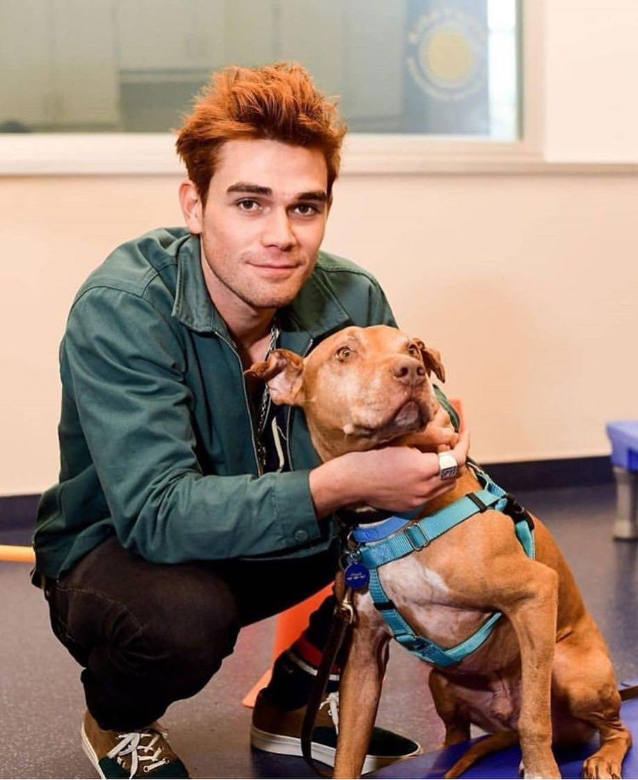 Pin by Stella Grace on KJ Apa 4 thru 11 and MORE Archie