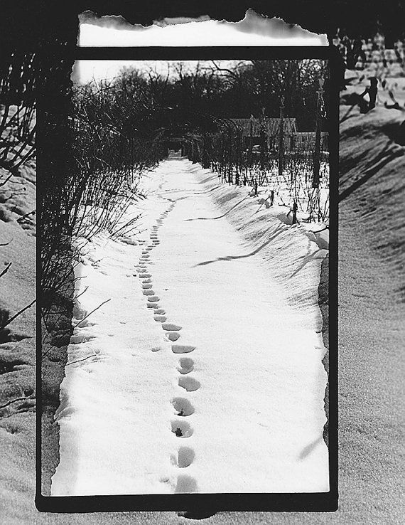 Footprints in snow print black white 35mm film photography nature garden