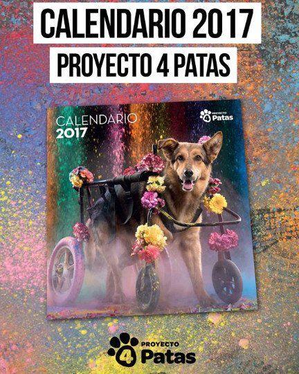 Calendario Solidario 2017 - individual