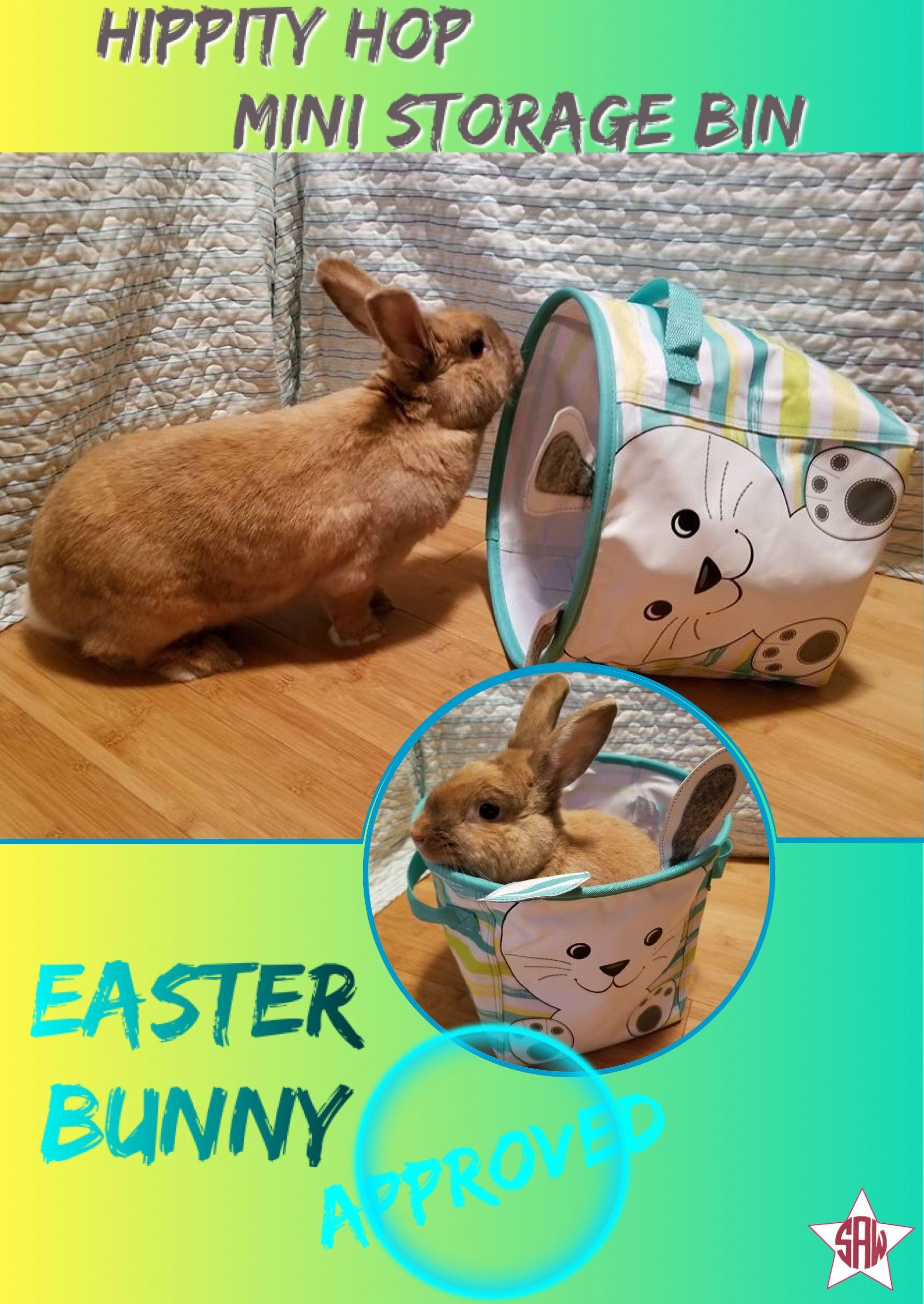Hippity hop mini storage bin. Easter Bunny approved