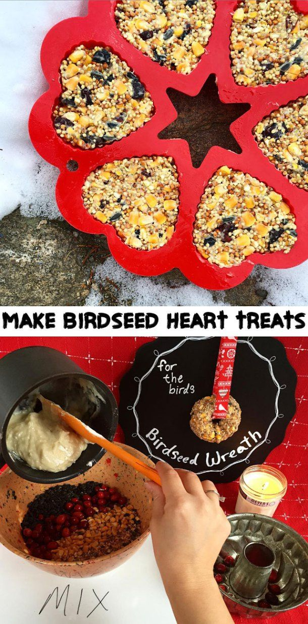 How To Make Bird Seed Heart Treats And Wreaths
