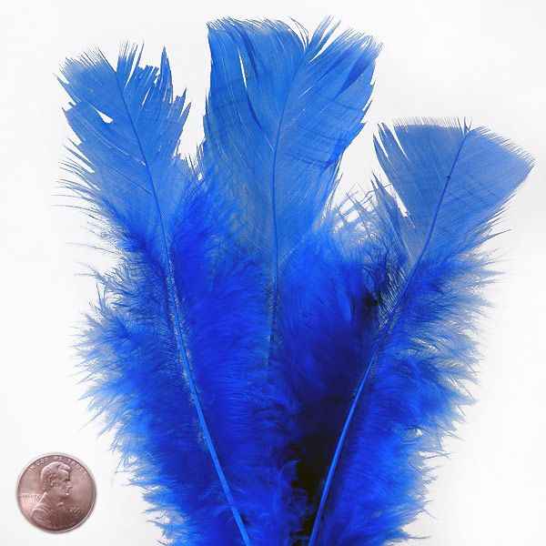 Colored Flat Coverlet Turkey Feathers