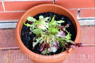 A little bit of Jess : Vegetable Garden   The Beginnings