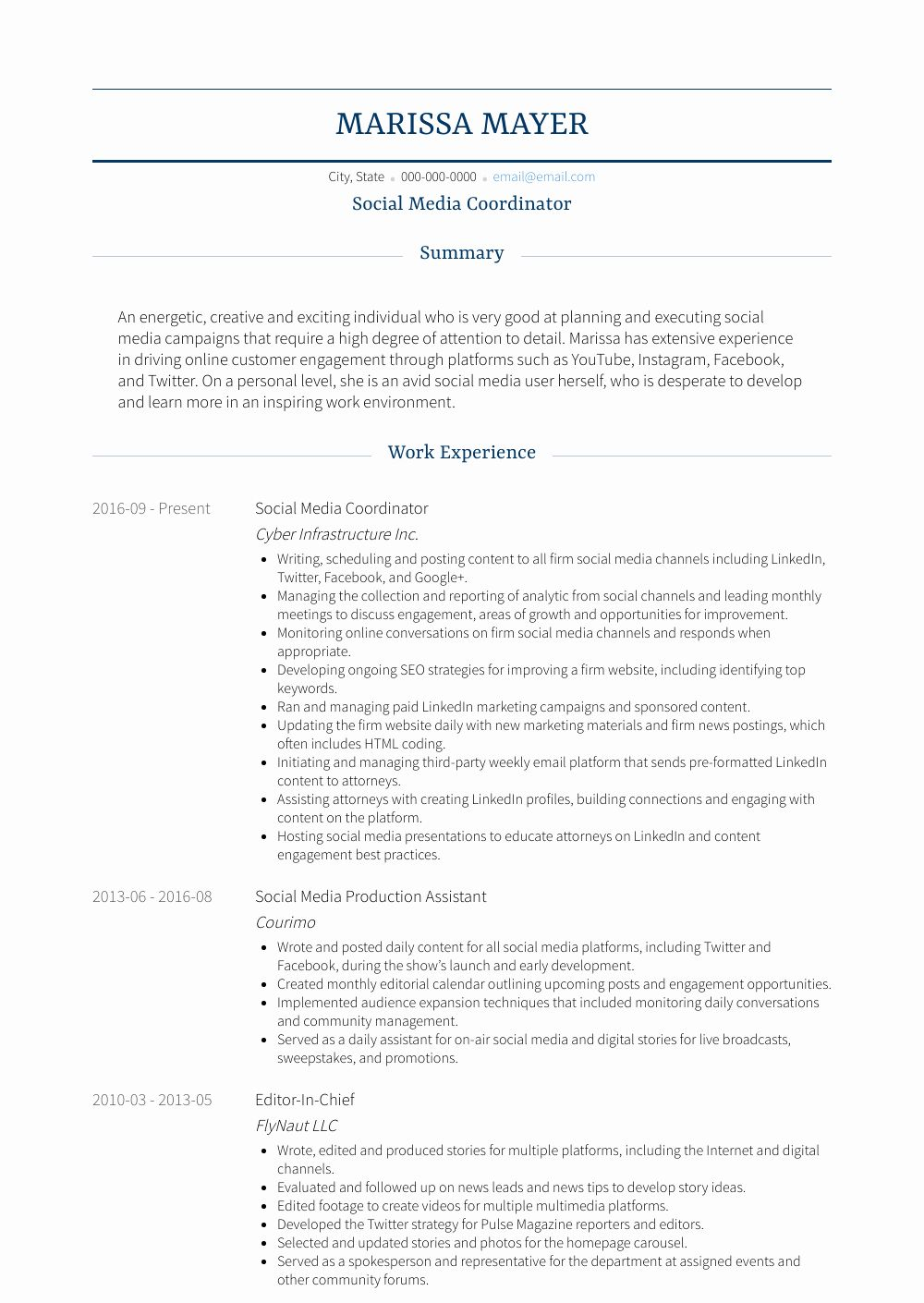 Social Media Resume Examples Best Of social Media