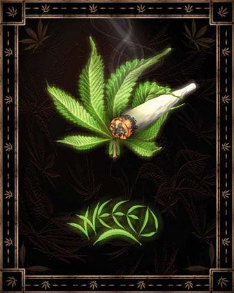 420 Weed Wallpaper This Site Is For Stoners Only Lovele