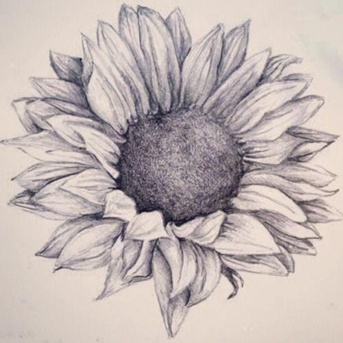 Sunflower Tattoo Tattoo Sunflower Drawing Pencil Tattoos Sunflower Tattoo Shoulder Sunflower Tattoo Design