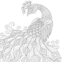 Раскраска антистресс распечатать а4 in 2020 | Peacock ...