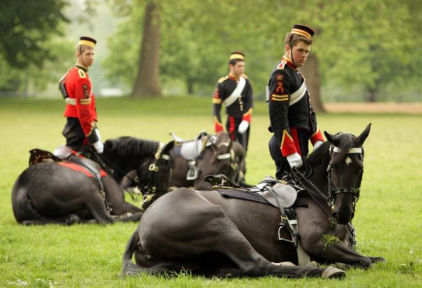 Household Cavalry with their horses who lie down on command.