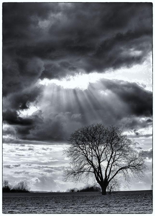 Lovely Sky Landscape Photography Blackandwhite Bw Landscape Photography White Picture Breathtaking Photography Black And White Photography