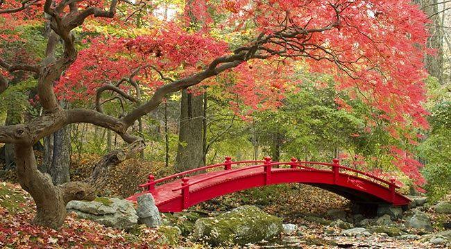 accessoires pour jardin japonais great le jardin japonais est beau et apaisant et peut vous. Black Bedroom Furniture Sets. Home Design Ideas