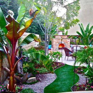 charming tropical garden design ideas   Small spaces, Big Ideas - tropical - landscape - san diego ...