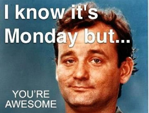 Quotes About People Who Notice: Bill Murray You're Awesome Meme - Picsora