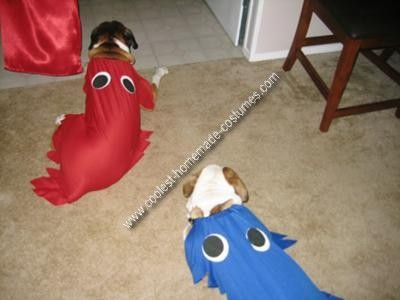 Pin On Pet Halloween Costumes