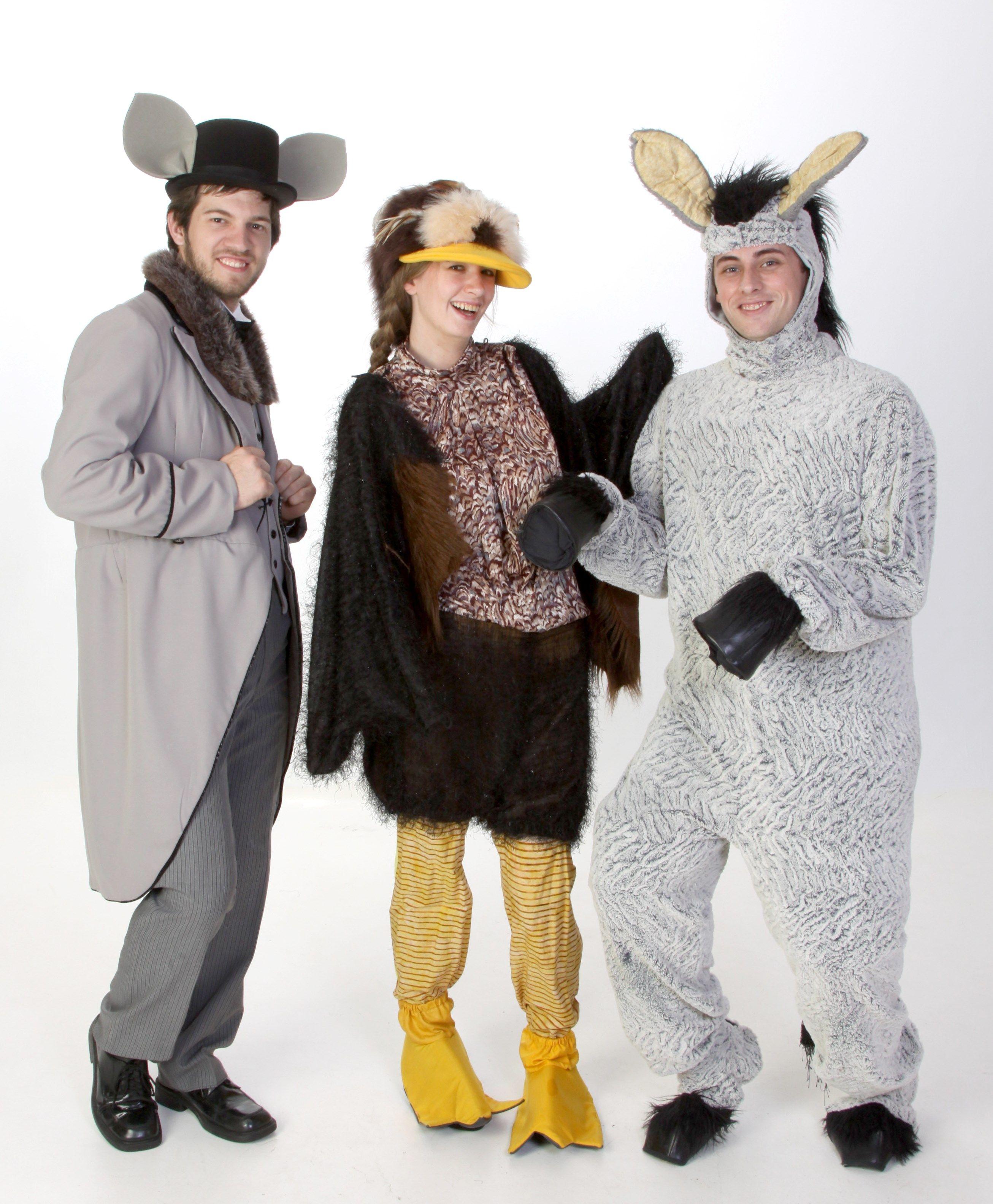 Tap-Dancing Rat Ugly Duckling Donkey Costumes - Shrek Rental from $39-  sc 1 st  Pinterest & Tap-Dancing Rat Ugly Duckling Donkey Costumes - Shrek Rental from ...