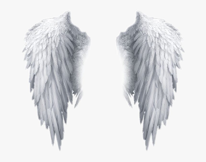 White Angel Wings Transparent Background Hd Png Download Is Free Transparent Png Image Download And Us In 2020 White Angel Wings Skull Girl Tattoo Angel Wings Images