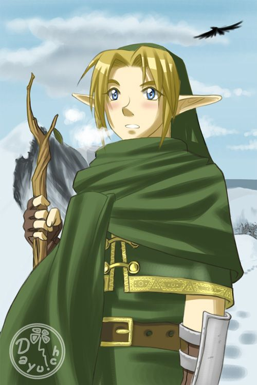 Zelda Never Ending Quest By Dayu On Deviantart Legend Of Zelda Hyrule Warriors Twilight Princess