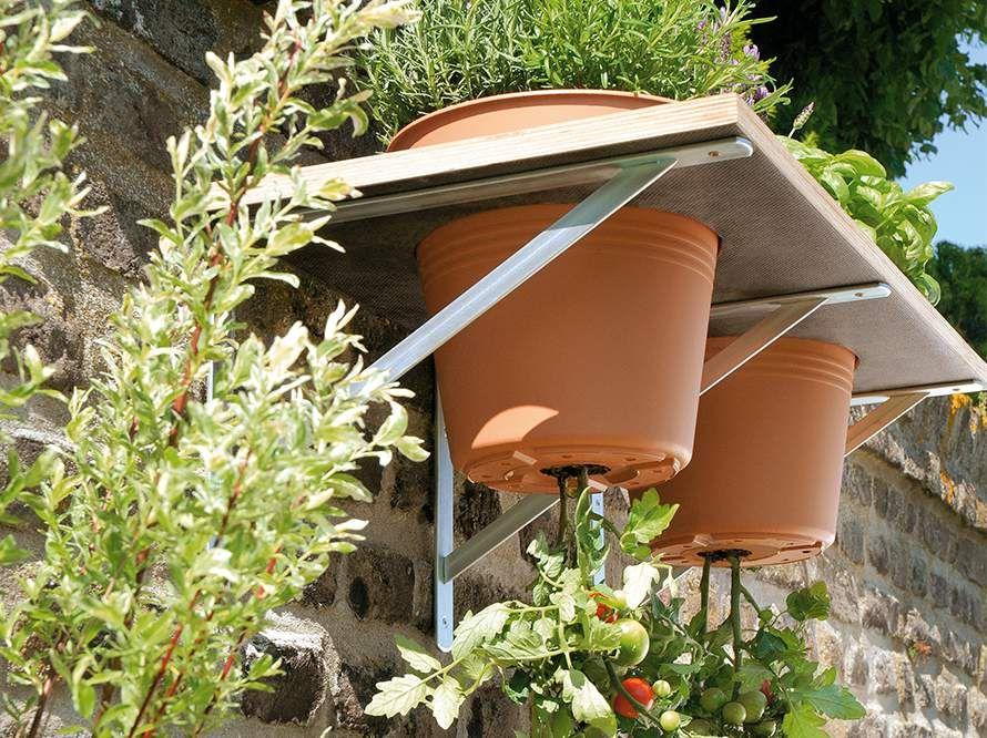 toom kreativwerkstatt upside down tomate ideen garten garten ideen und gem segarten. Black Bedroom Furniture Sets. Home Design Ideas